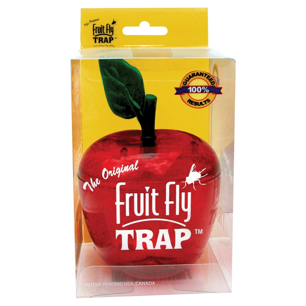 fruit fly trap how to make a fruit fly trap